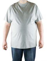 T-Shirt Gris Manches Courtes Col Rond 100% Cotton All Size