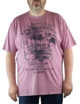 T-Shirt Violet Imprimé Kitaro du 2XL au 8XL