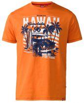 Tshirt Manches Courtes Grande Taille Orange Duke du 3XL au 6XL